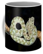 Eyelash Viper Coffee Mug
