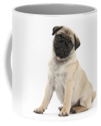 Fawn Pug Pup Coffee Mug