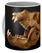 Kodiak Bear Skull Coffee Mug