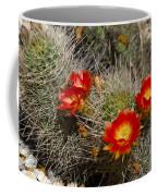 Red Cactus Flowers Coffee Mug