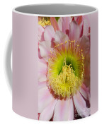 Pink Cactus Flower Coffee Mug