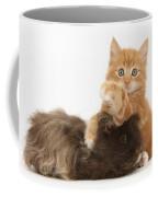Kitten And Guinea Pig Coffee Mug