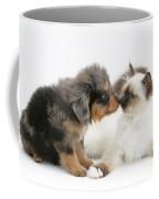 Puppy And Kitten Coffee Mug