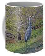 9- Sandhill Crane Coffee Mug