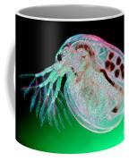 Water Flea Daphnia Magna Coffee Mug