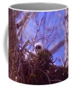 A Baby Red Tail Gazing From Its Nest Coffee Mug