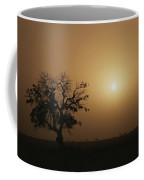 A Baobab Tree Adansonia Digitata Coffee Mug