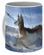 A Barbed Wire Fence Is An Obstacle Coffee Mug