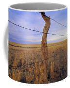 A Barbed Wire Fence Stretches Coffee Mug