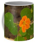 A Beautiful Orange Trumpet Shaped Flower With Green Leaves Coffee Mug