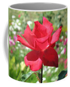 A Beautiful Red Flower Growing At Home Coffee Mug