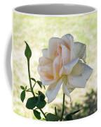 A Beautiful White And Light Pink Rose Along With A Bud Coffee Mug