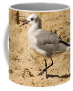 A Bird Of Many Colors Coffee Mug