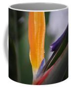 A Bird Of Paradise I Coffee Mug