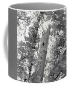A Black And White View Of The Interior Coffee Mug