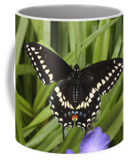 A Black Swallowtail Butterfly, Papilio Coffee Mug by George Grall