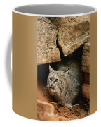 A Bobcat Pokes Out From Its Alcove Coffee Mug by Norbert Rosing