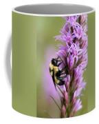 A Bombus Bumblebee On A Coffee Mug