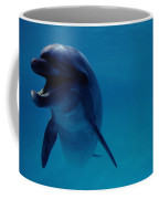 A Bottlenose Dolphin Swims In The Blue Coffee Mug