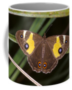 A Brightly Colored Brown And Yellow Coffee Mug