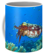 A Broadclub Cuttlefish, Kimbe Bay Coffee Mug