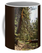 A Broken Tree Coffee Mug