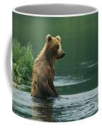 A Brown Bear Standing In Water Hunting Coffee Mug