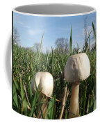 A Bugs View Coffee Mug