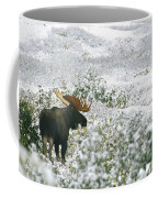A Bull Moose On A Snow Covered Hillside Coffee Mug by Rich Reid