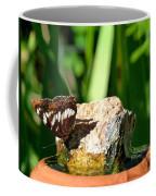 A Butterfly Enjoys A Drink Coffee Mug