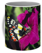 A Butterfly Lands On A Pink Flower Coffee Mug