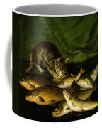 A Cat With Trout Perch And Carp On A Ledge Coffee Mug by Stephen Elmer