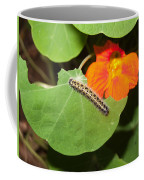 A Caterpillar Eating The Leaves Of A Plant With A Beautiful Orange Flower Coffee Mug