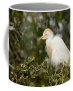 A Cattle Egret Bubulcus Ibis Coffee Mug