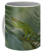 A Chameleon With Yellow Eyes Balances Coffee Mug