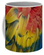 A Close-up View Of A Parrots Rainbow Coffee Mug