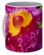 A Close View Of A Bright Pink Cattleya Coffee Mug by Jonathan Blair