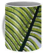 A Close View Of A Fern Coffee Mug