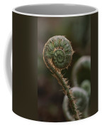 A Close View Of A Fiddlehead Fern Frond Coffee Mug