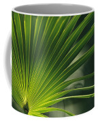 A Close View Of A Palm Frond Coffee Mug