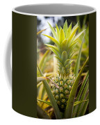 A Close View Of A Tainung Pineapple Coffee Mug