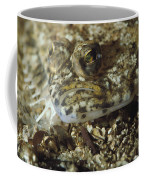 A Close View Of A Well-camouflaged Coffee Mug