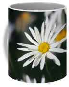 A Close View Of A Wild Daisy Coffee Mug
