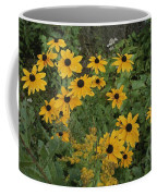 A Close View Of Black-eyed Susans Coffee Mug