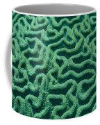 A Close View Of Bright Green Brain Coffee Mug