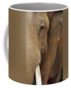 A Close View Of The Face Of An Coffee Mug