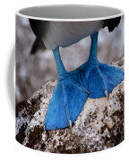 A Close View Of The Webbed Feet Coffee Mug by Tim Laman