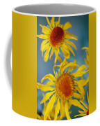 A Close View Of Two Daisies Coffee Mug