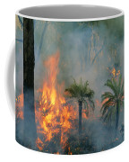 A Controlled Fire Helps Prevent Coffee Mug by Randy Olson