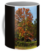 A Country Place Painted Coffee Mug